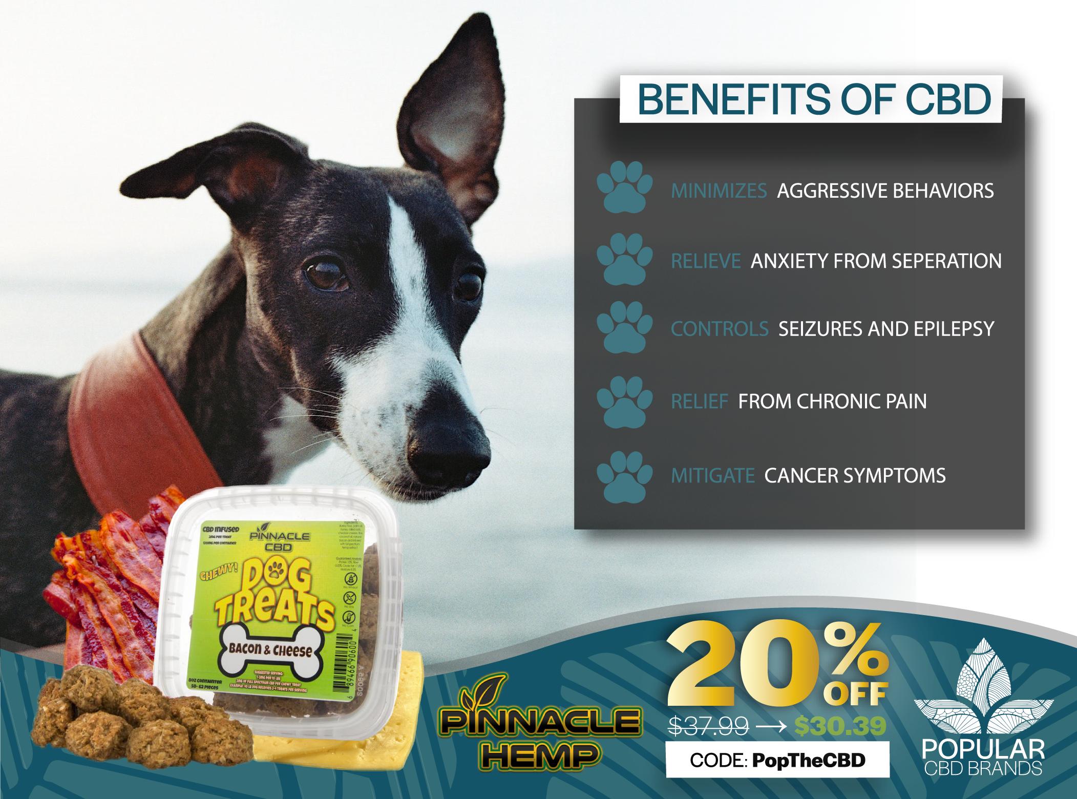 Dog Treats   CBD for Pets   Medical prescription, Dogs, Pets
