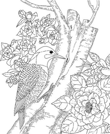 Yellowhammer And Camellia Alabama State Bird Flower Coloring Page