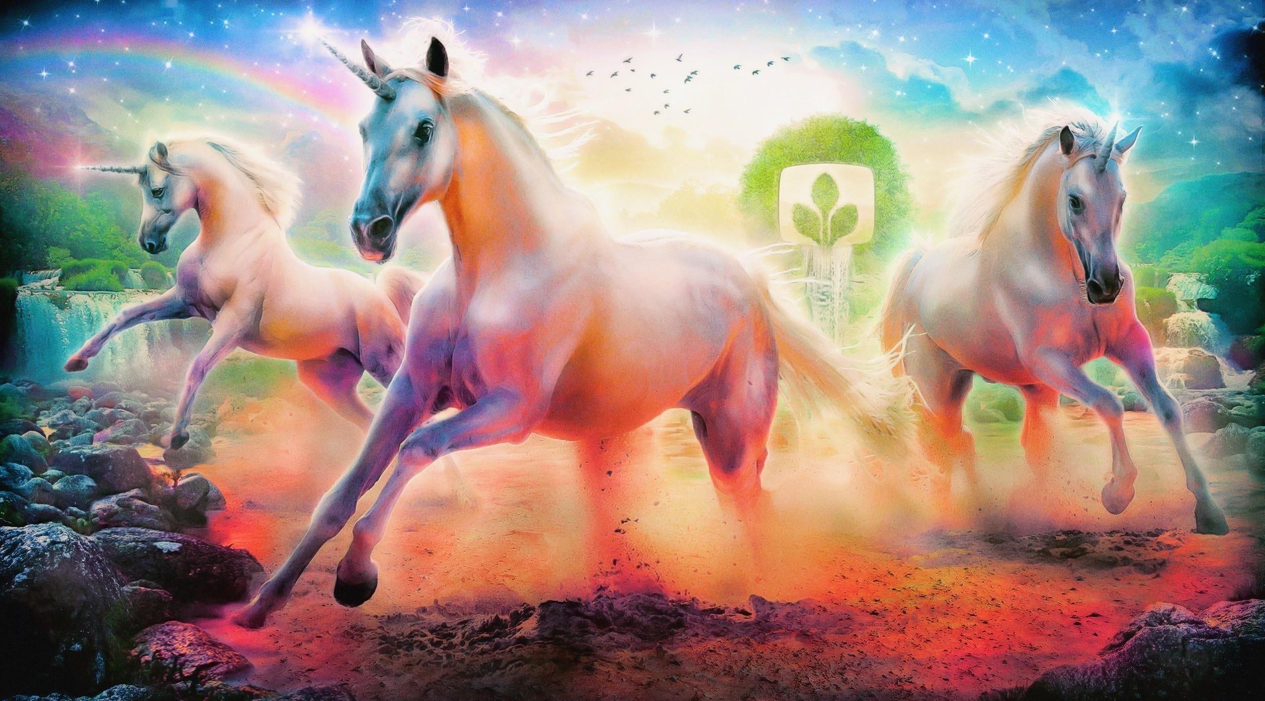 Three White Horses Illustration Unicorn Wallpaper Rainbow Emblem Tree Unicorn Wallpaper Horse Illustration Rainbow Wallpapers