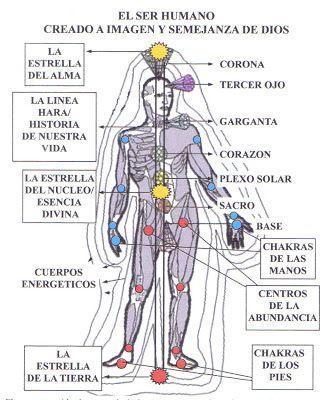 Vivir En Armonia Cuerpos Energeticos Cuerpo Cuerpo Humano Esquema Del Cuerpo Humano
