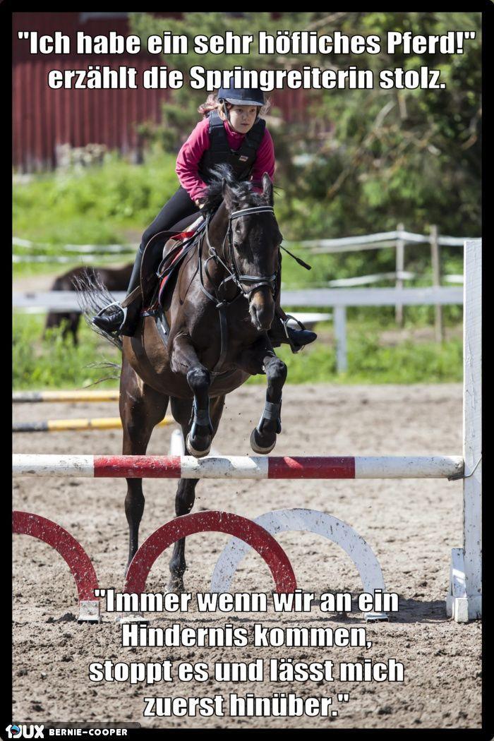 Ich habe ein sehr höfliches Pferd – #Ein #Habe #höfliches #ich #Pferd #sehr
