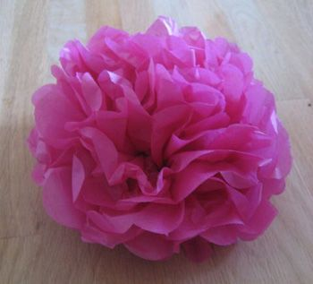 Create a colorful tissue paper garden tissue paper flowers tissue how to make tissue paper flowers mightylinksfo Images