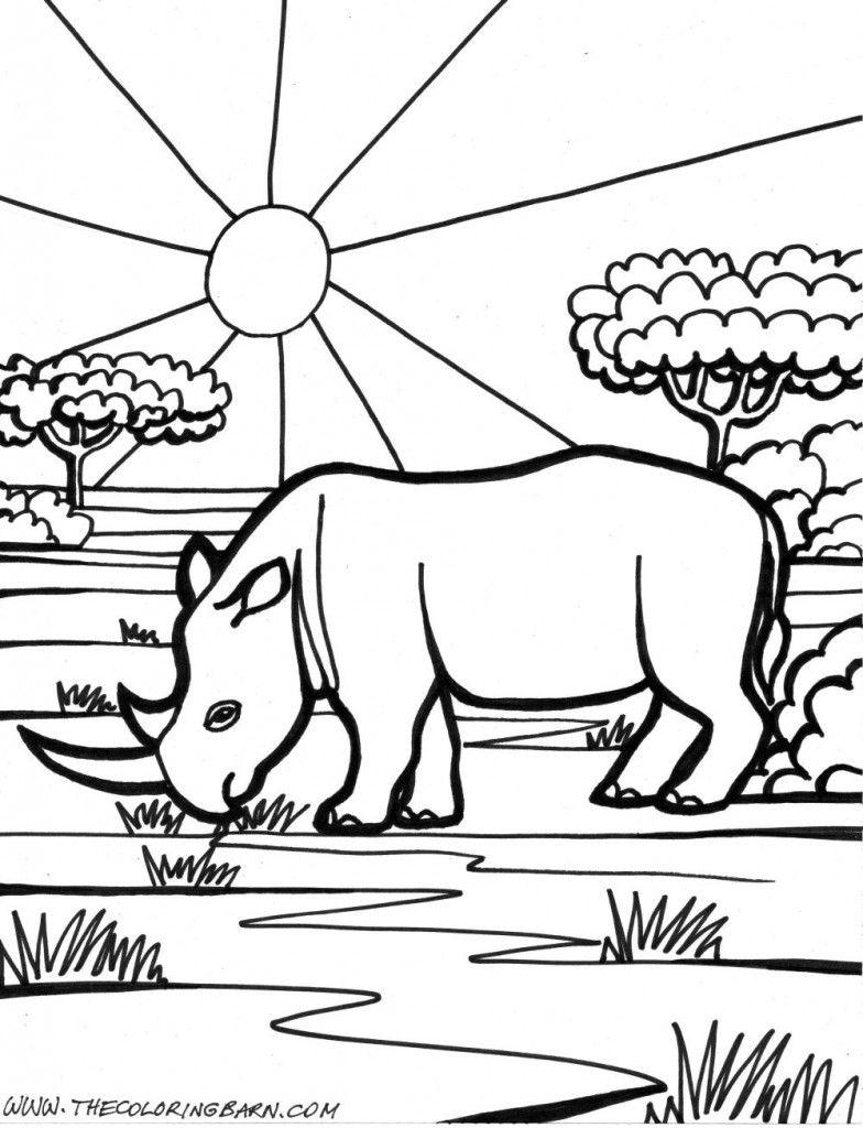 rinoceronte dibujos | Dibujos para colorear | Pinterest ...
