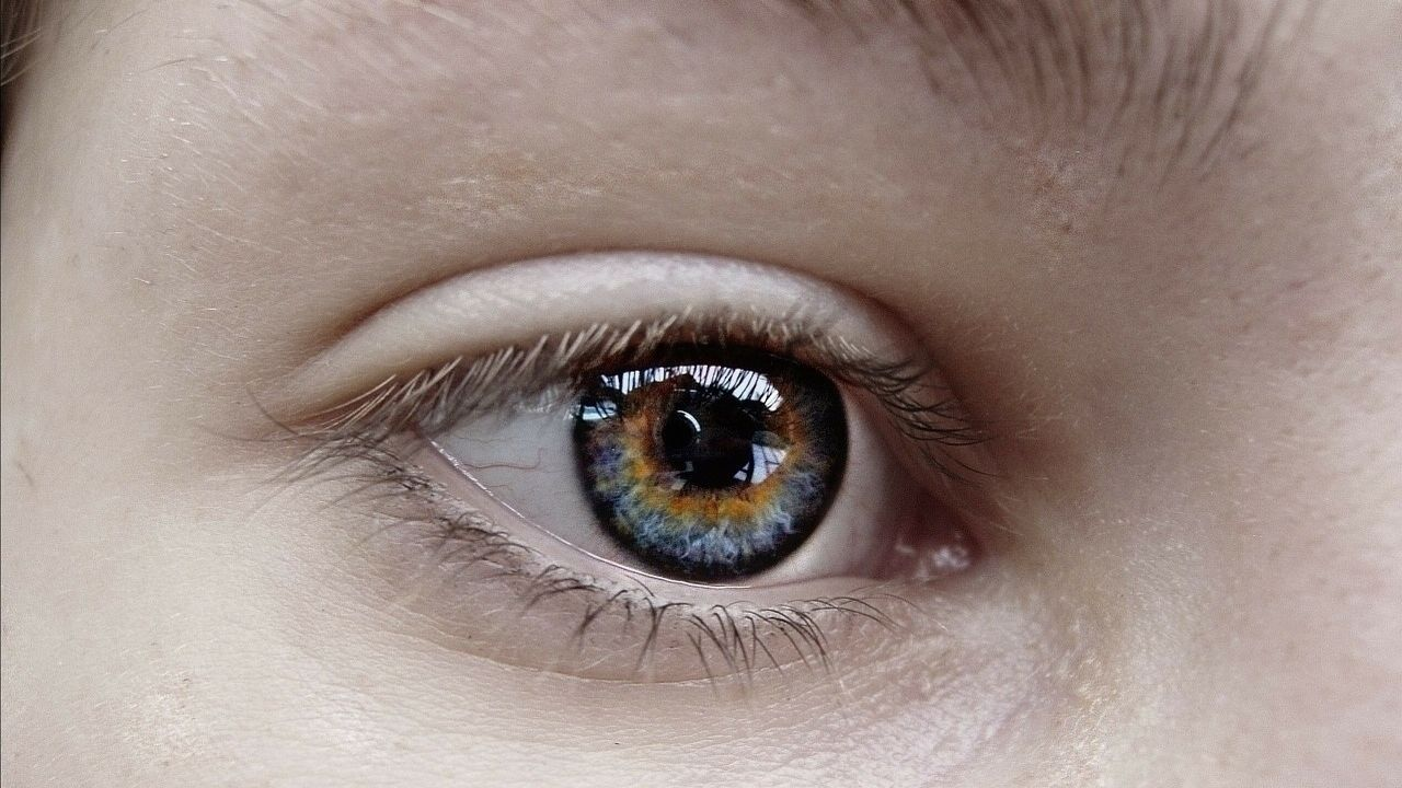 The Science Behind Color Blindness: How People are Affected