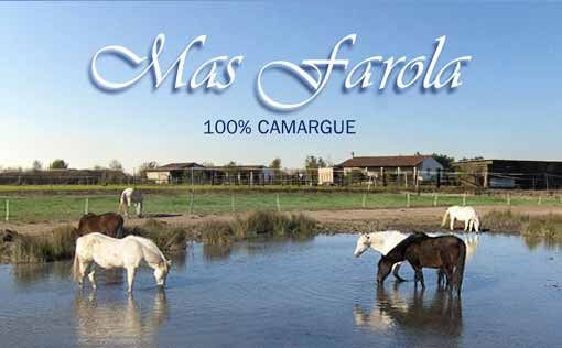 Mas Farola Gite Et Chambres Proche Les Saintes Maries De La Mer Camargue Gite Equestre Camargue Sainte Marie