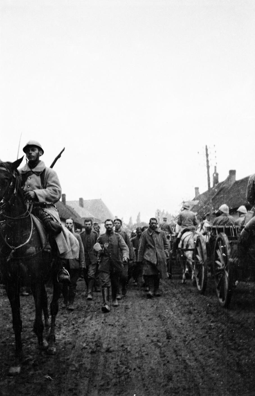 """Eté 1916, dans la Somme.   """"Les chevaux accompagnent les armées en permanence, mais pas sous la forme de charges de cavalerie. Ils servent essentiellement pour le transport. Les soldats sont très marqués par la mort des chevaux, certains y voient une preuve supplémentaire de l'absurdité du conflit."""" FRANTZ ADAM / AFP"""