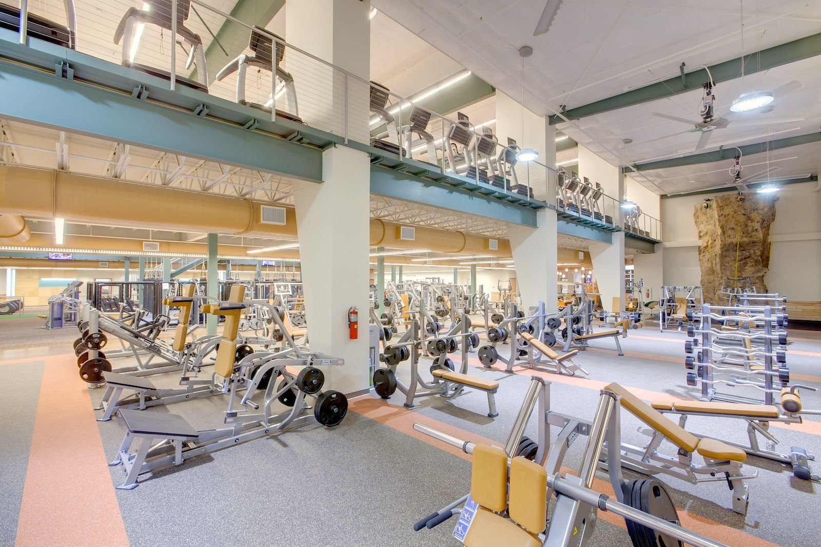 Free Weights And Climbing Wall At Efc Augusta Fitness Center Fitness Fitness Facilities