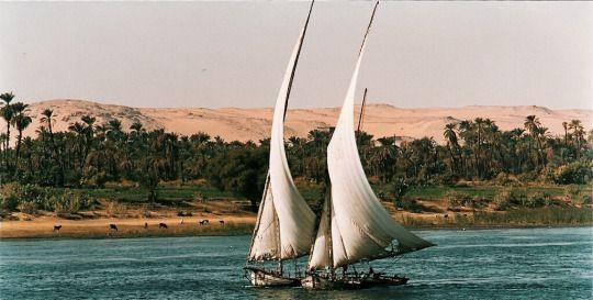 Divane Egypt, 1989 by Vincenzo Tosini
