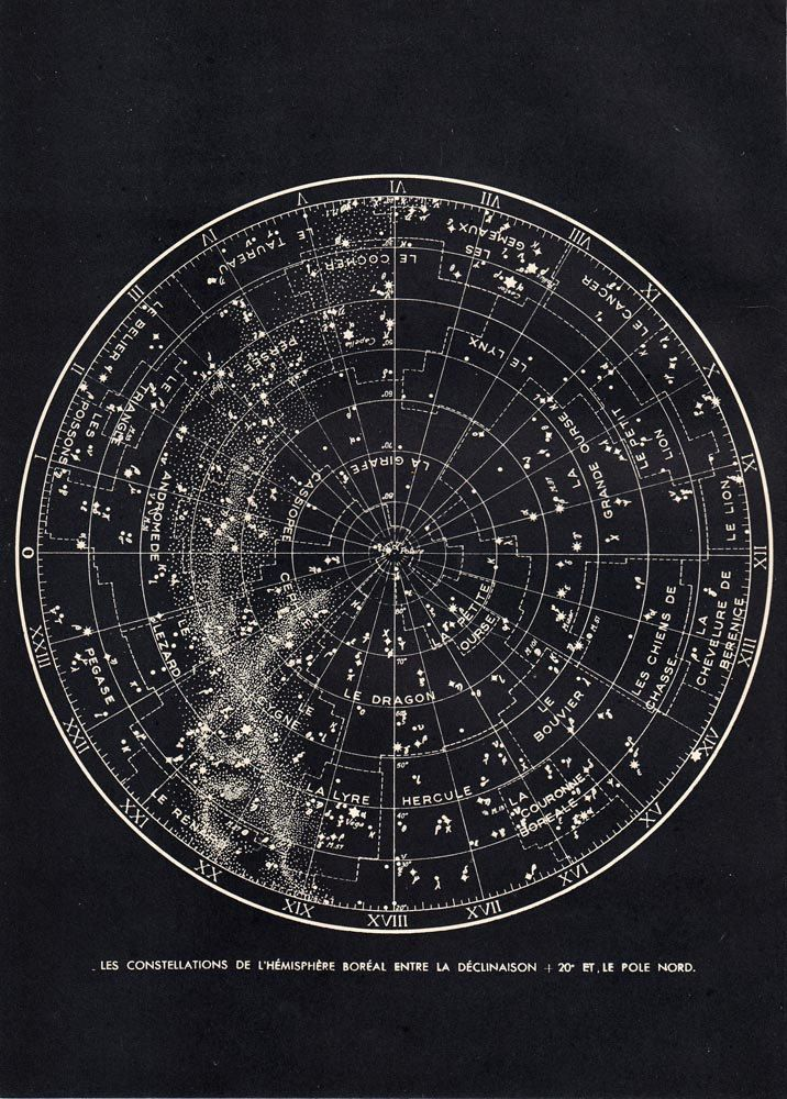 Star Chart Northern Sky Astronomy Print S Constellations Map