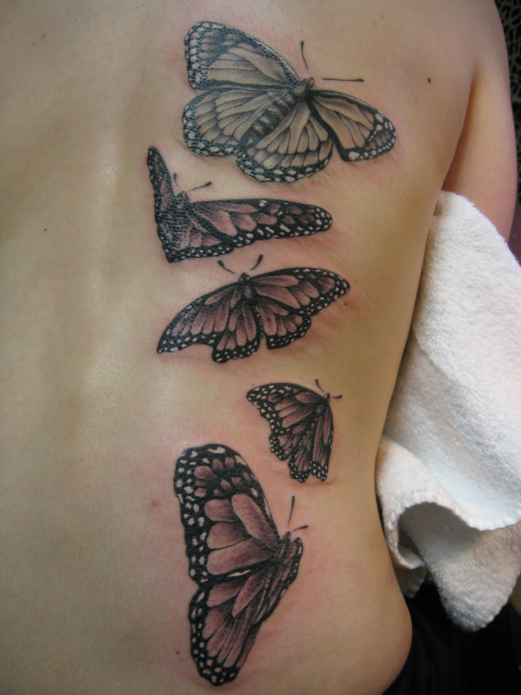 Black and gray monarch butterflies by russell fortier at