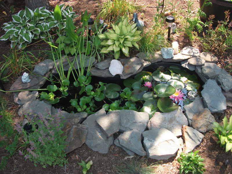 Pre fab pond with warefall idesa google search diy for Diy cheap pond liner