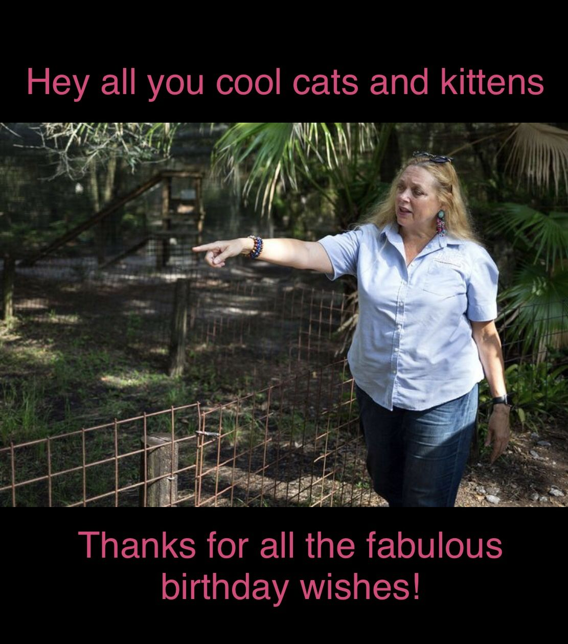Carole Baskin Birthday Meme In 2020 Cool Cats Cats And Kittens Kittens
