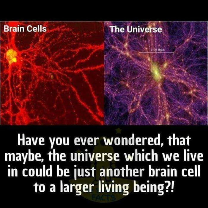 Perhaps god is the being our universe resides in. And he/she also lives in a universe that is a brain cell of another being. Perhaps this goes on infinitely and there is an endless multiverse.