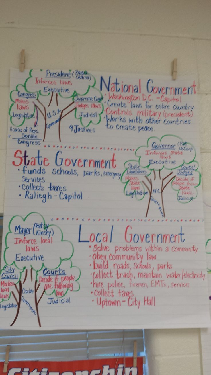 Branches of Government Anchor Chart us Third grade