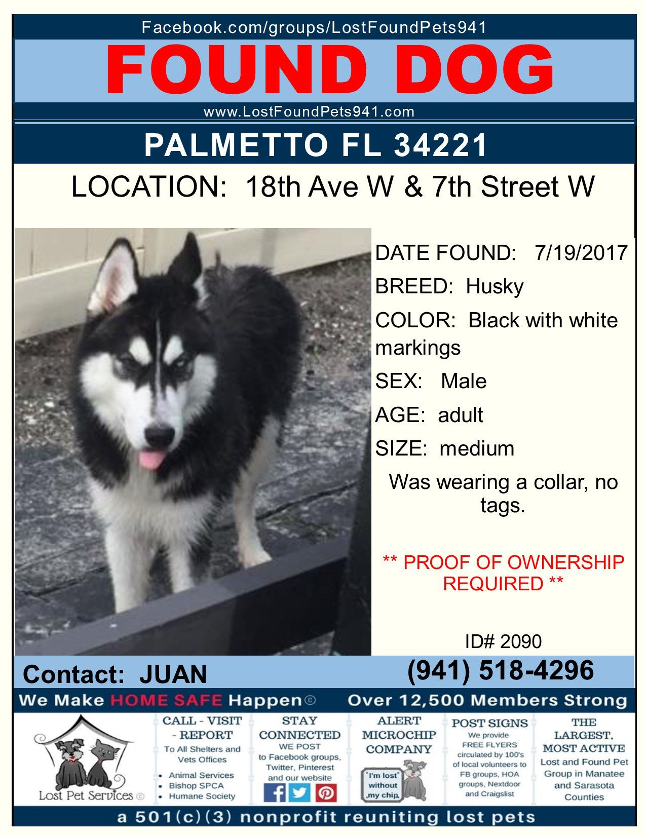 Do You Know Me Lost Found Dog Husky Missingpets Palmetto Fl 34221 Lostfoundpets941 Manateecounty Losing A Pet Service Animal Husky Colors