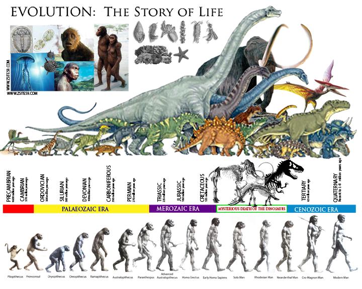 EVOLUTION: The Story of life │ The Prehistoric ERAS │ Dinosaur ...