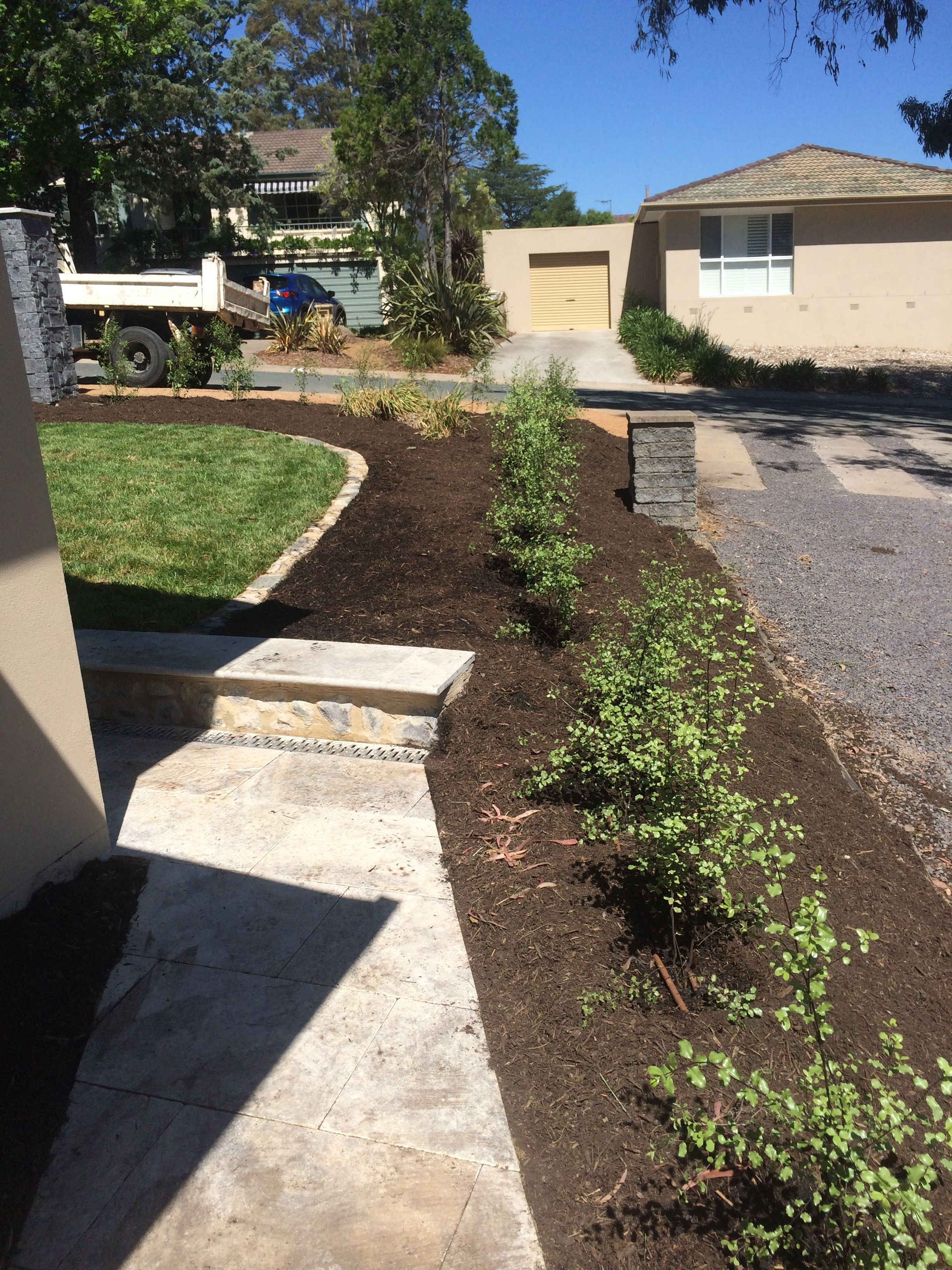 front yard steps grass canberra blend mulch hedging