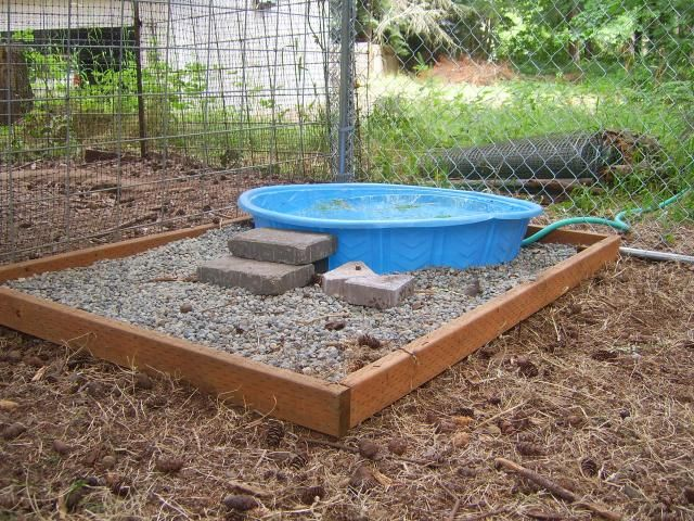 Duck pen i am going to try something like this in my for Duck hutch ideas
