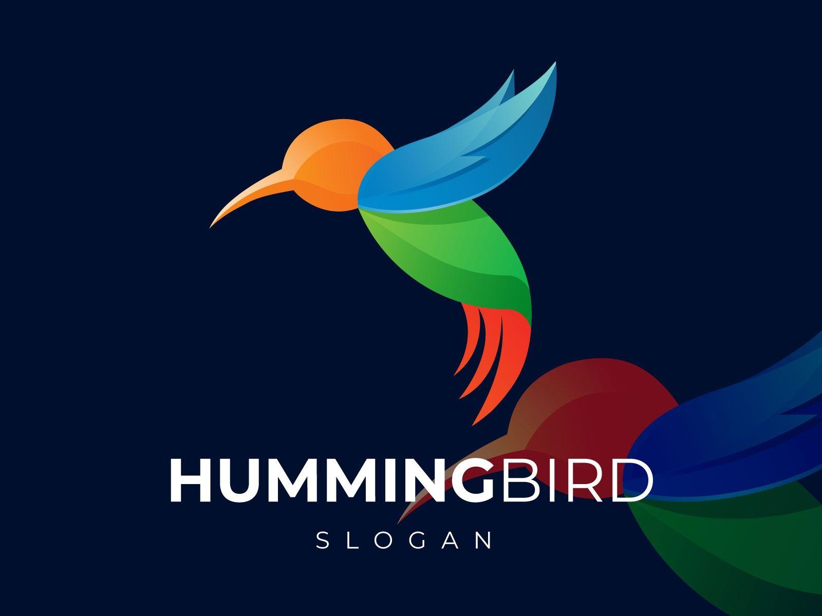 Abstract Colorful Hummingbird Logo Abstract logo