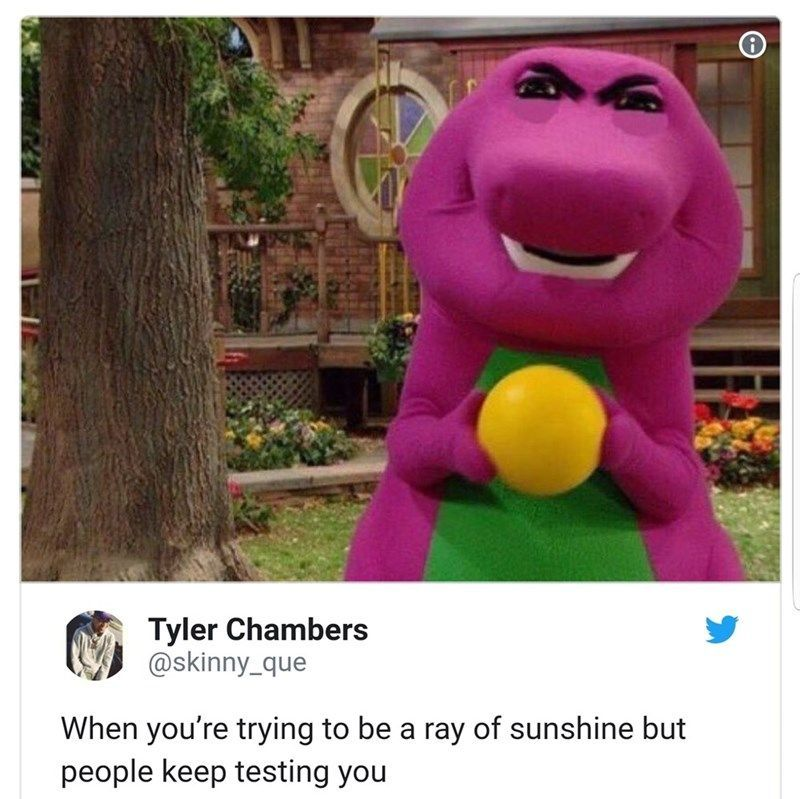 45 Funny Random Memes To Lighten Up Your Life