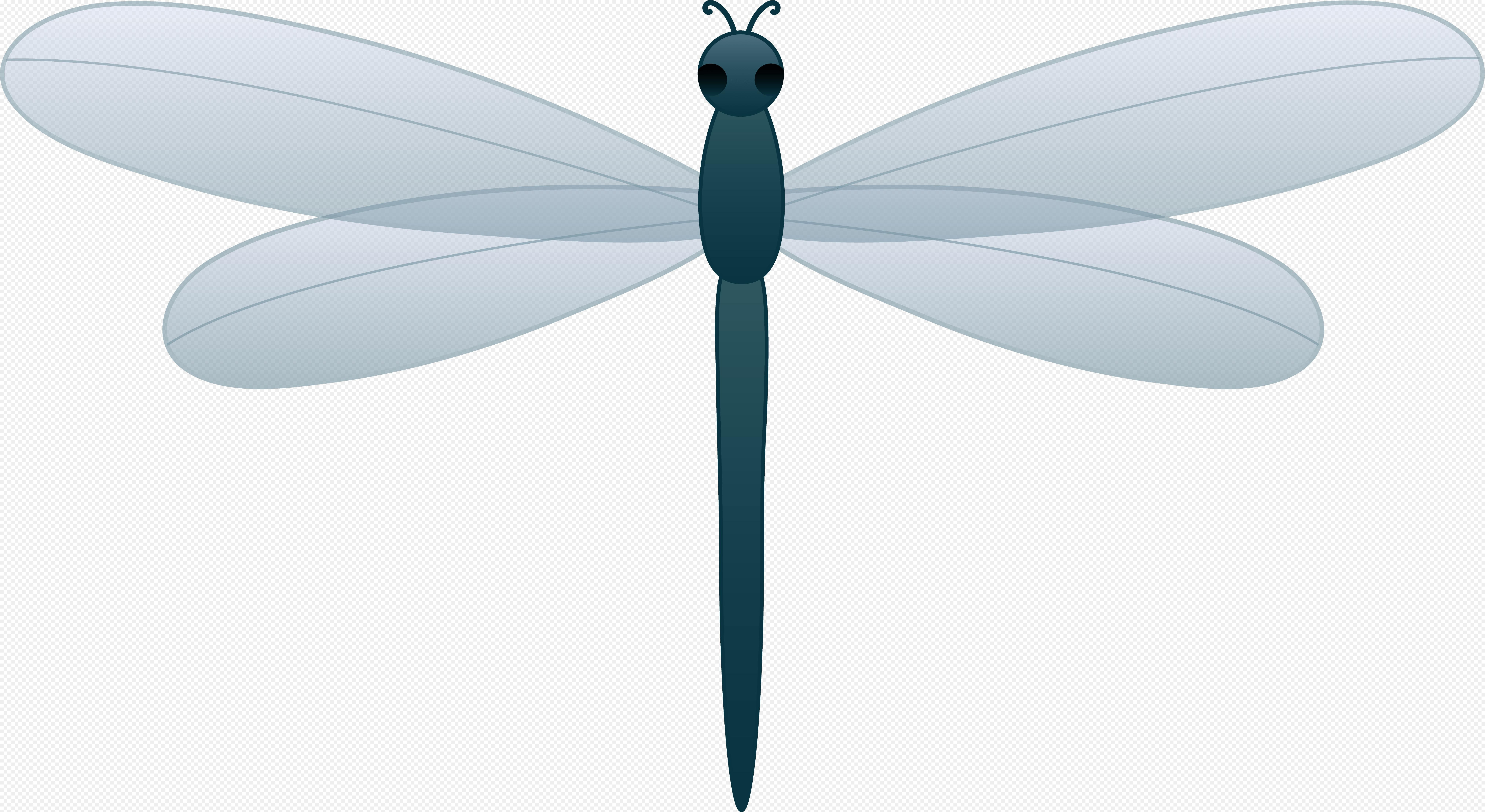 Dragonfly Drawing Png Free Dragonfly Clipart Pictures Clipartix 577 425 Png Download Free Transpa Dragonfly Drawing Dragonfly Clipart Dragonfly Symbolism