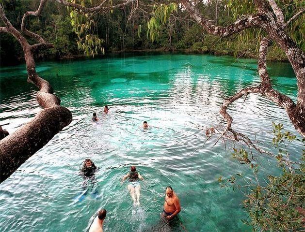 Pantanal Matogrossense, Brazil