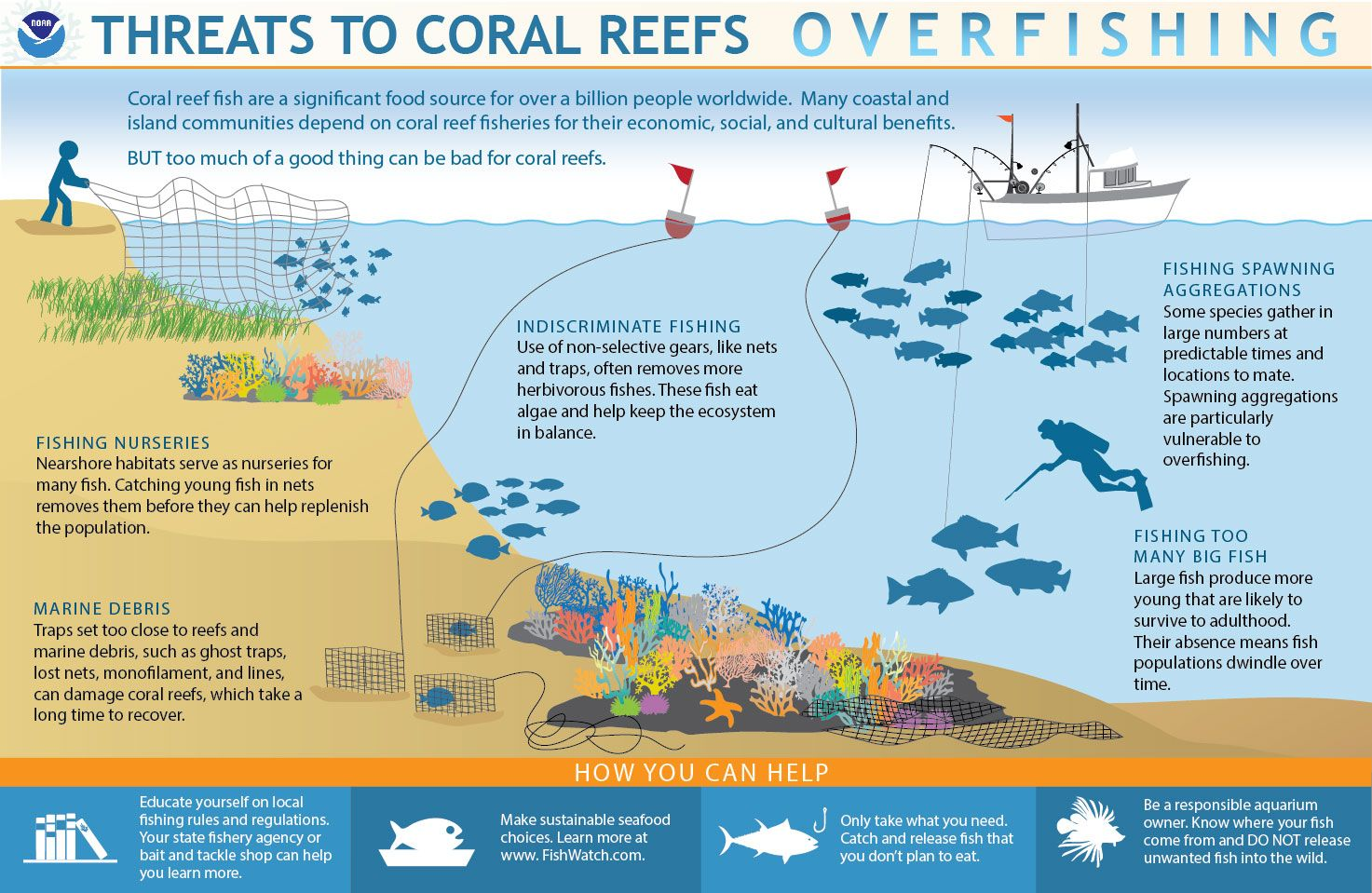 Infographic Showing Threats To Coral Reefs Overfishing