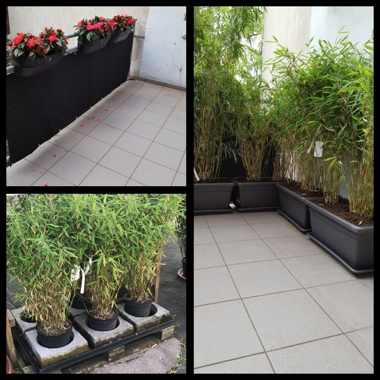 Neue Vision Fur Die Terrasse Terrasse Bambus Sichtschutz