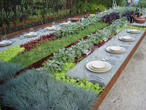 Outdoor Dining With Herbs And Veggies Growing On Your Table So Fun Edible Garden Outdoor Gardens Garden