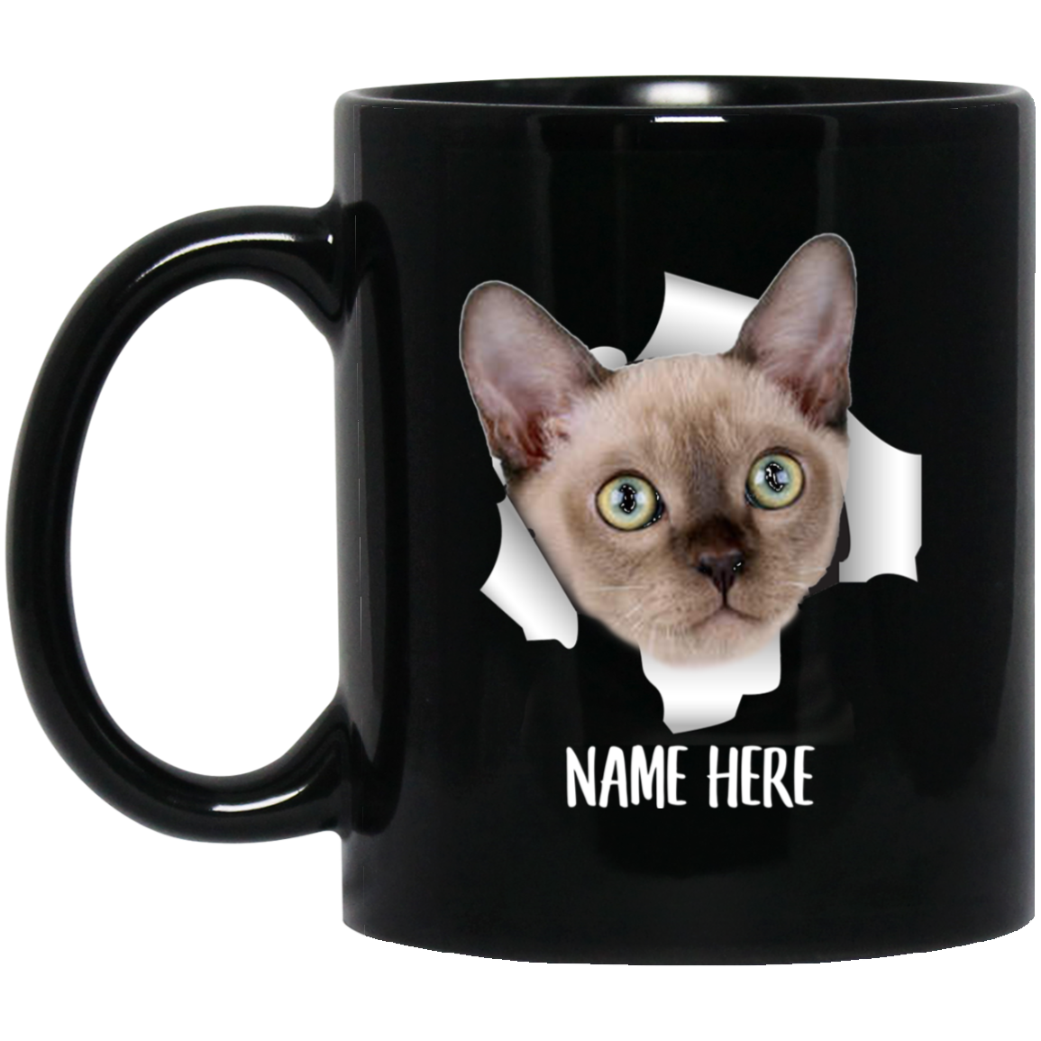 Funny Gifts Burmese Cat Champange  A Wise Woman Coffee Mug 11oz