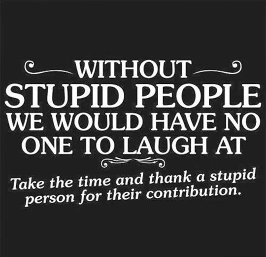 Thank You Dumb People Stupid Quotes Stupid Person Stupid People