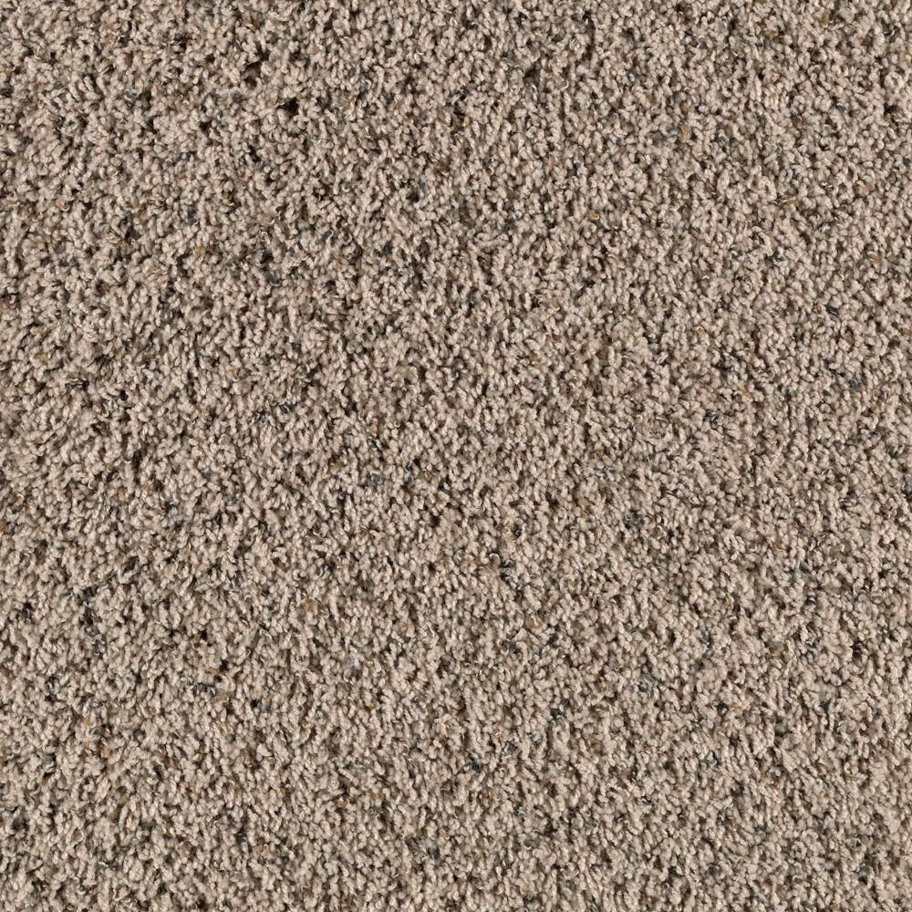 Lifeproof Bassano Ii Color Oyster Shell 12 Ft Carpet Carpet Samples Carpet Stores Indoor Carpet