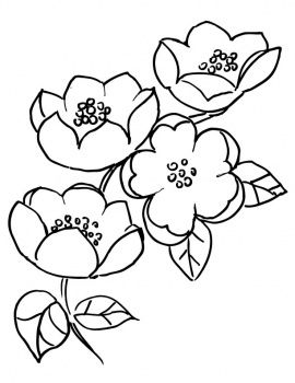 Apple Blossom Branch Flower Coloring Pages Flower Drawing