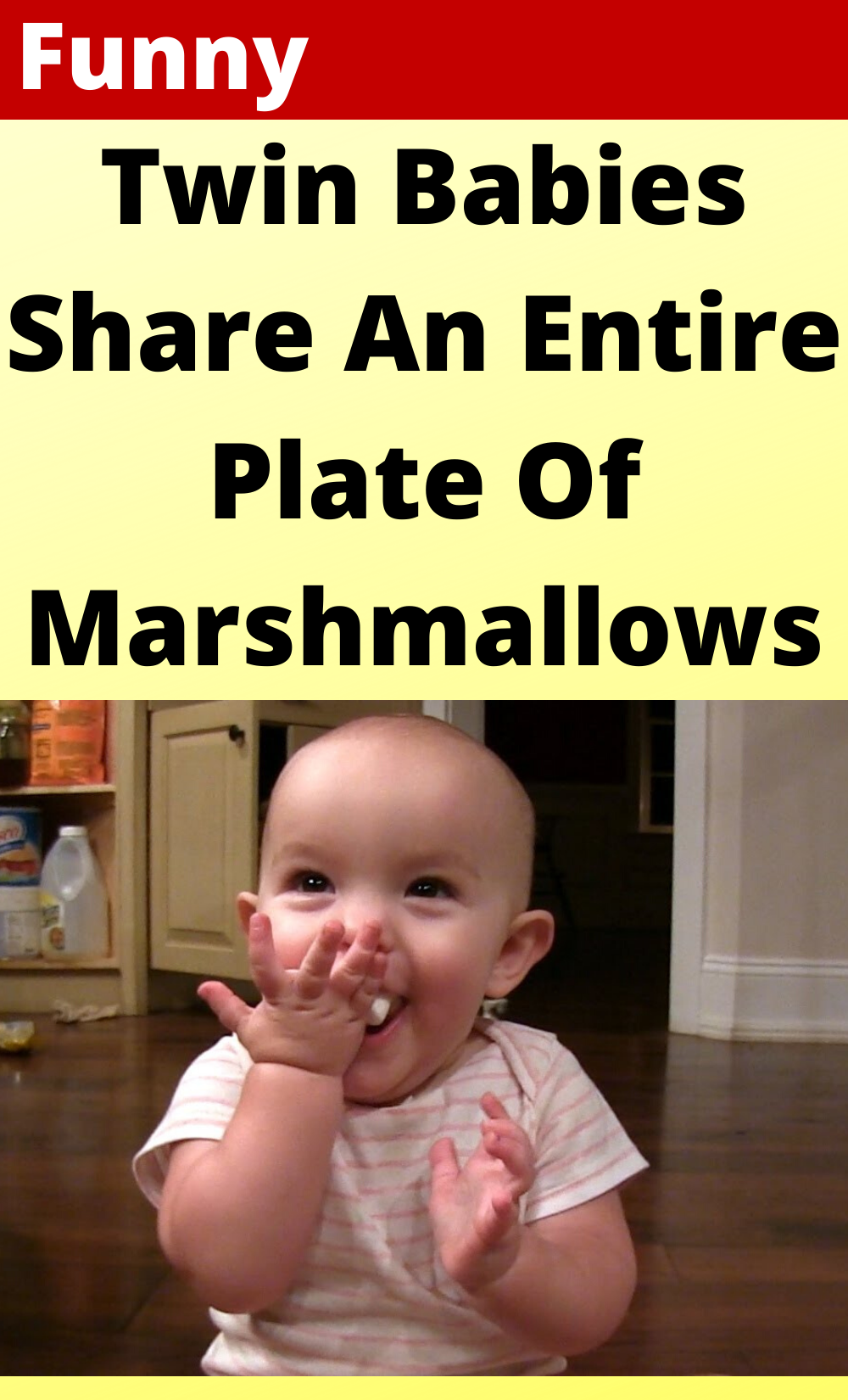 Twin Babies Share An Entire Plate Of Marshmallows In 2020 Twin Humor Funny Jokes Funny Posts