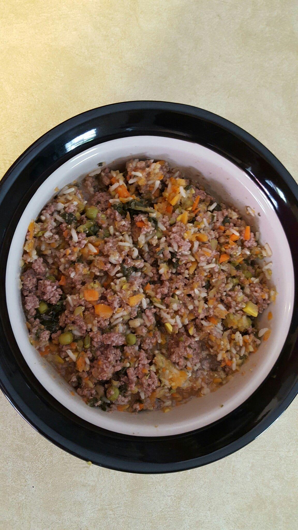 New Milford Ct Dog Food Recipes Make Dog Food Food