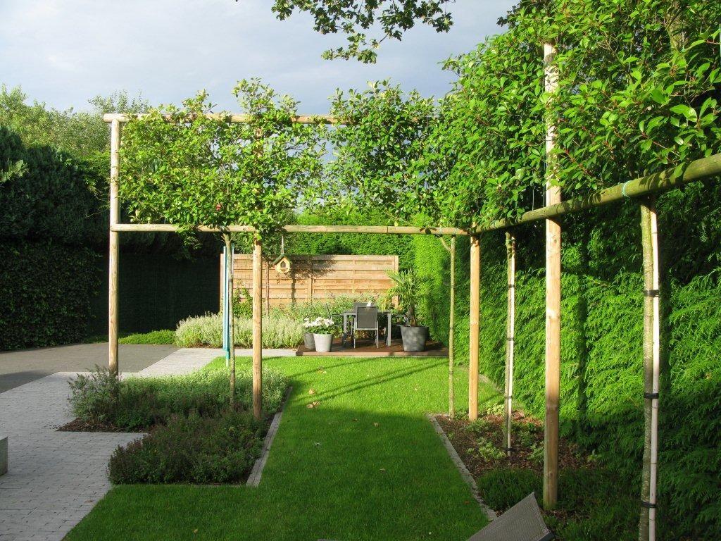 Leibomen breken inkijk en leggen accent op de breedte van for Tuin ontwerpen ipad
