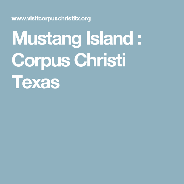 Mustang Island Beach: Mustang Island : Corpus Christi Texas (With Images