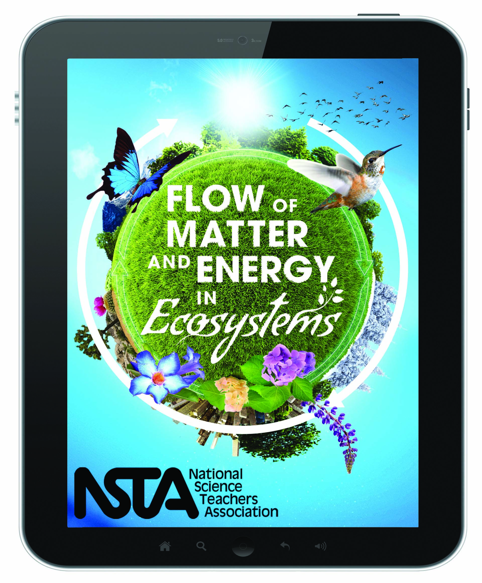 Flow Of Matter And Energy In Ecosystems S Itunes