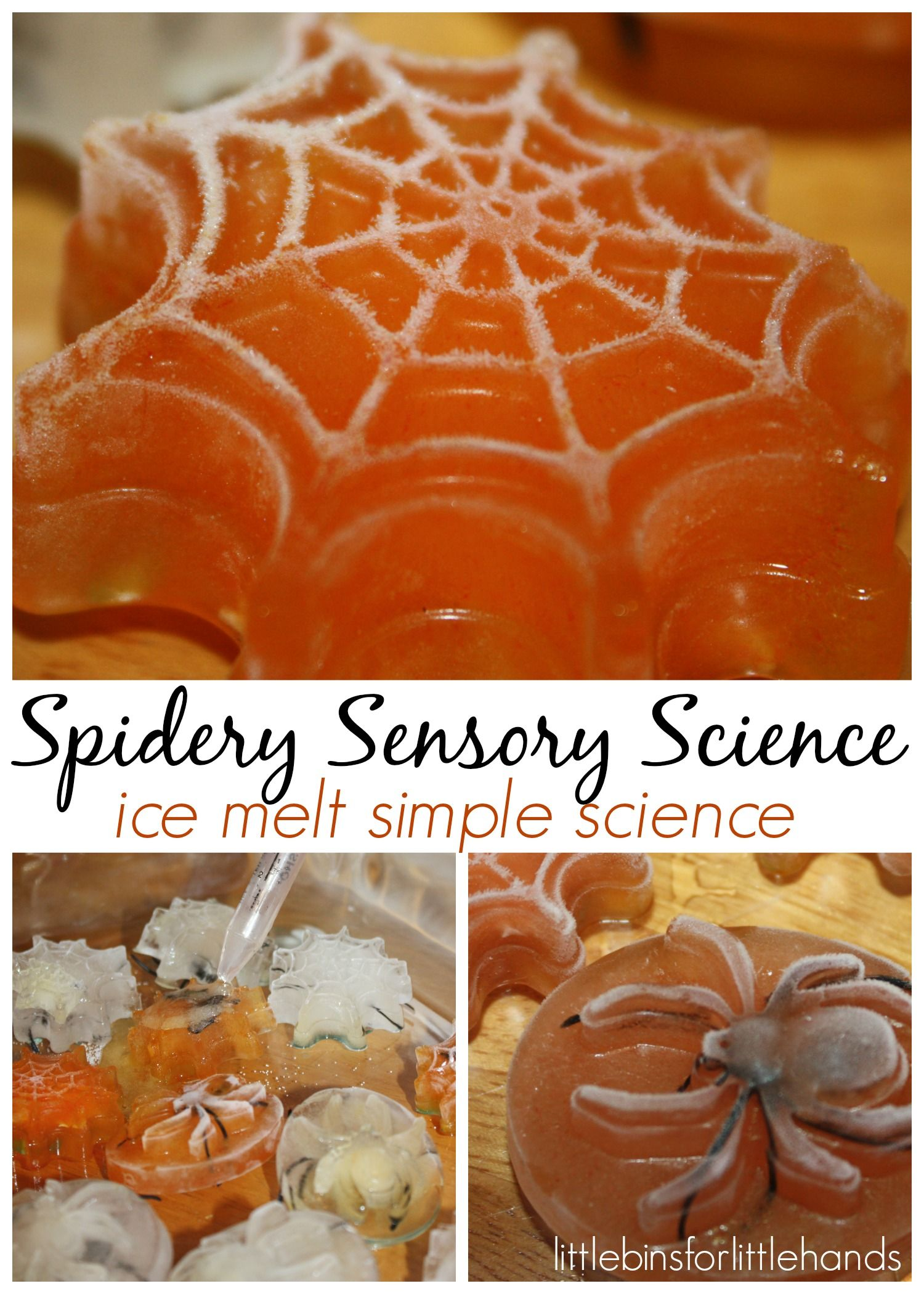 Halloween Spider Ice Melt Science Activity For Kids