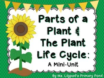 Plant Life Cycle and Parts of a Plant Unit for PreK, Kinder ...