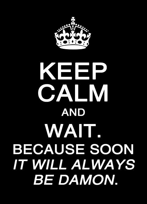 Keep Calm Poster - Damon & Elena