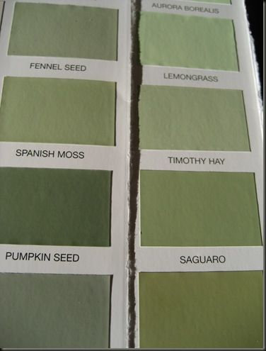 Spanish Moss Martha Paint Color We Have This