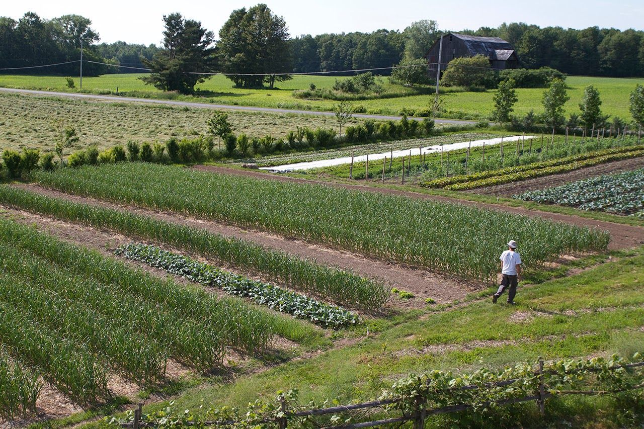the deliberate agrarian farming 1 5 acres and making a good