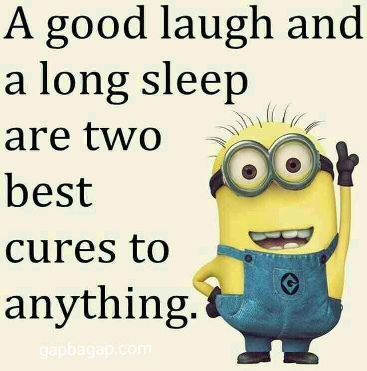 Well Said Quote By Minions