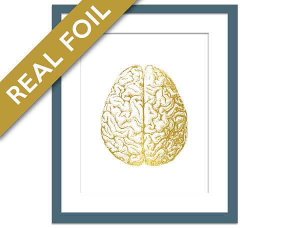 A wonderful human brain anatomical art print... Made with genuine foil - would make an elegant, sophisticated and sparkly addition to any room!