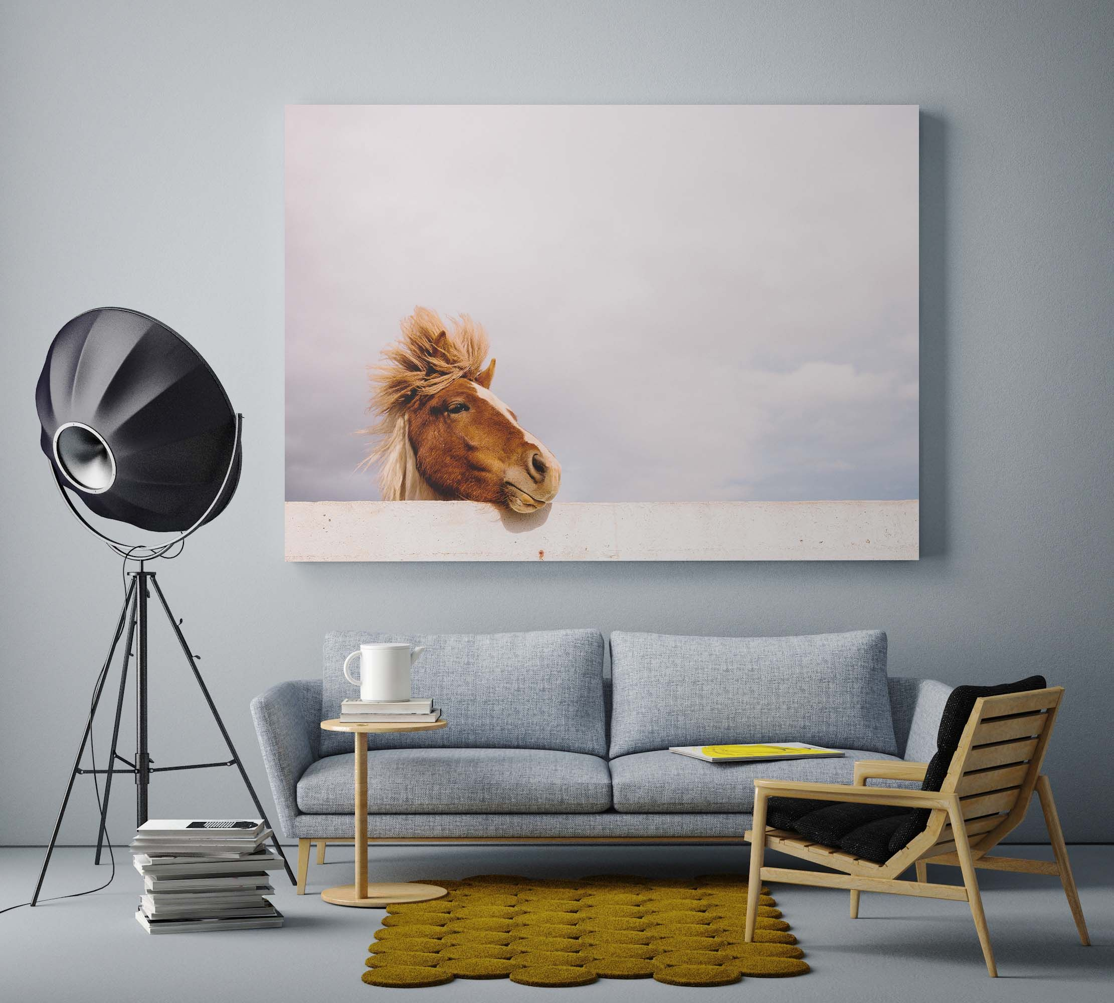 Funny Pony, photo art picture by USVA Gallery with grey furniture.
