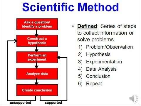 Science \ the Scientific Method (updated) ciencias Pinterest - scientific method worksheet