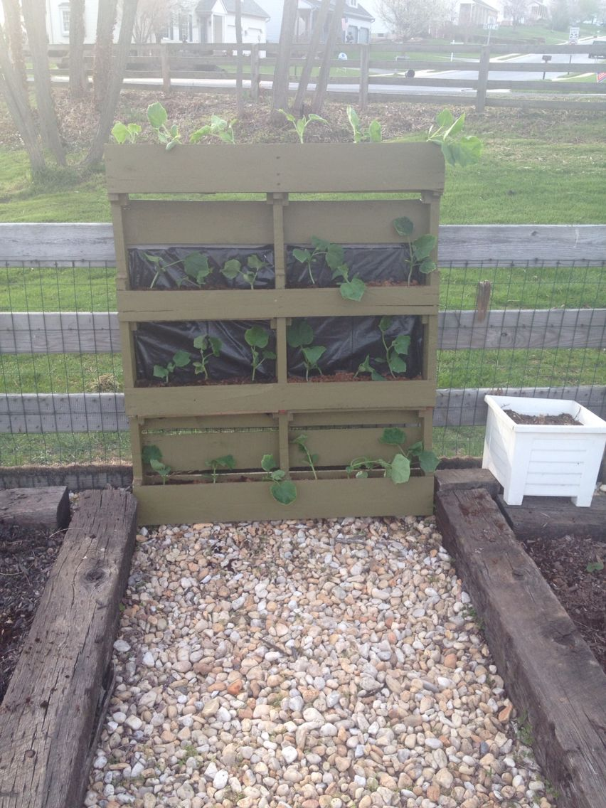 Great Idea For A Pallet Make An Up Right Planting Area Garden