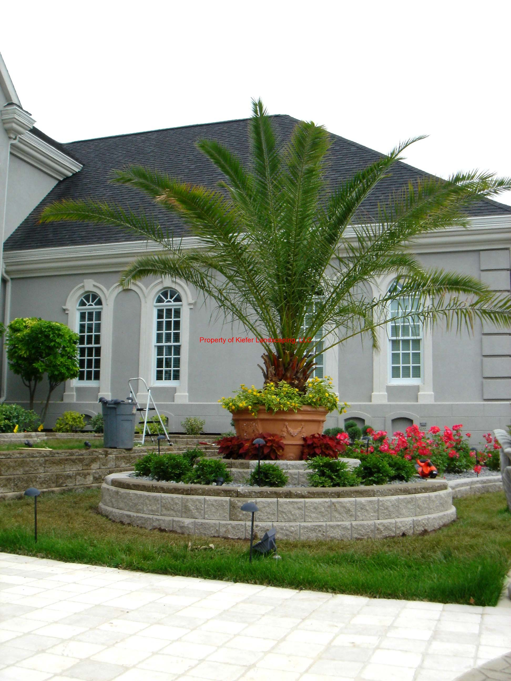 Retaining Wall Tropical Landscape Formal Landscape With Images