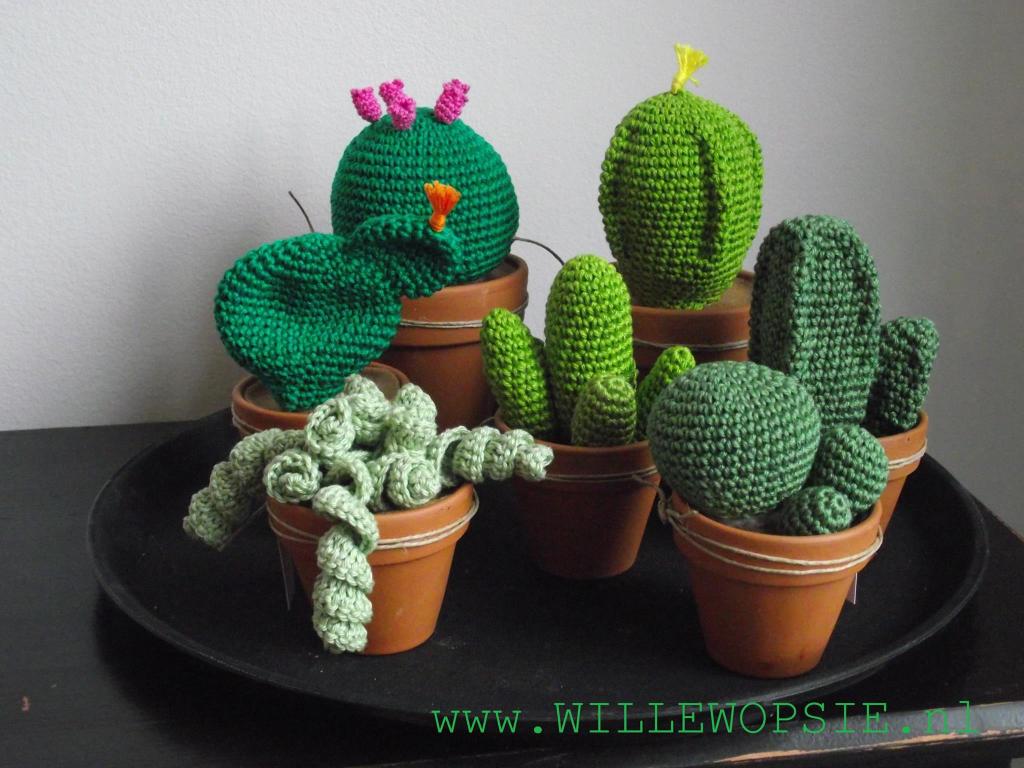 Amigurumi Cactus Crochet Pattern : Pin by lesbros on fleurs pinterest